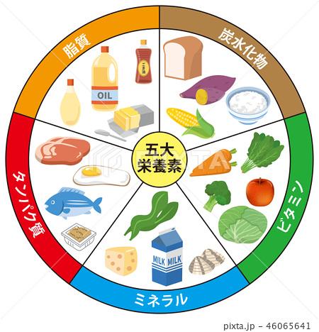 五大 栄養素 働き
